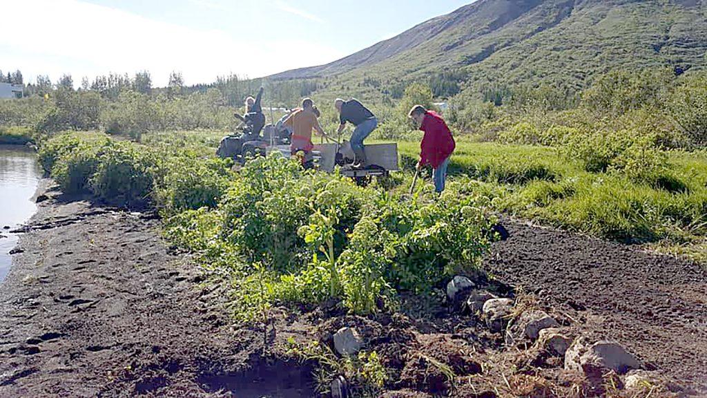 Gullspretturinn stóð fyrir lagfæringum á göngustíg í sumar.